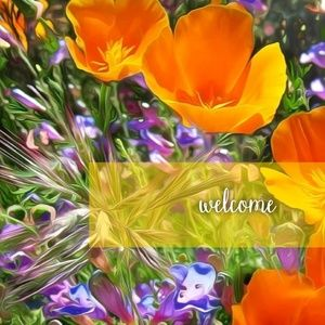 Other - | Welcome! |